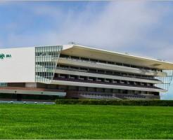 札幌競馬場の外観