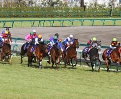 高松宮記念2015年の画像