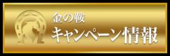金の鞍_有料情報_キャンペーン情報_悪質競馬サイト評価センター